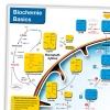 Ausschnitt Lerntafel Biochemie Basic