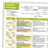 Ausschnitt Vitamin-Kompass